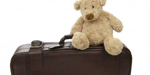 Teddy bear with suitcase