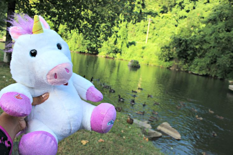 CloudPets at the Duck Pond